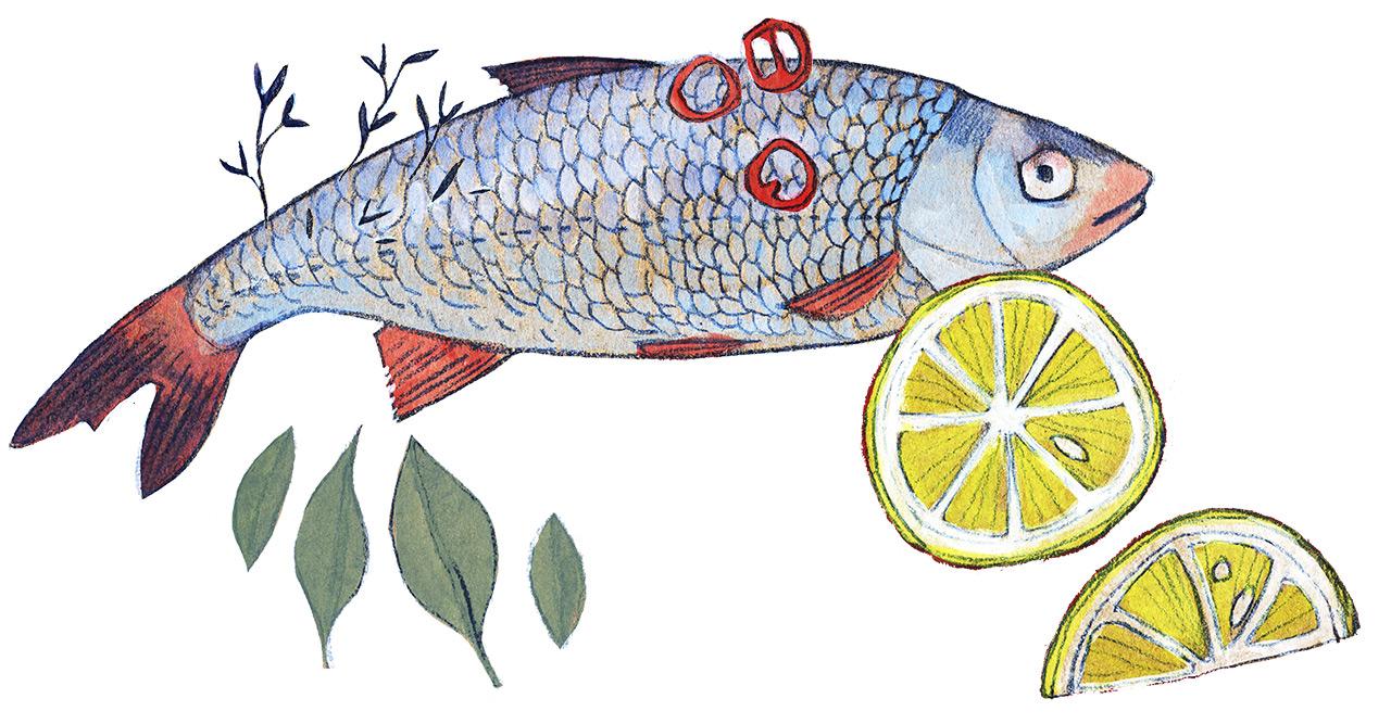 """Illustrationen """"Ökologische Weihnachten"""" für das Magazin Beobachter Natur"""